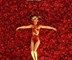 American Beauty (1999) Dual Audio Movie Free Download 480p 200MB