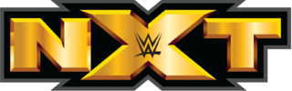 WWE NXT 20th May (2015) 200Mb 480p